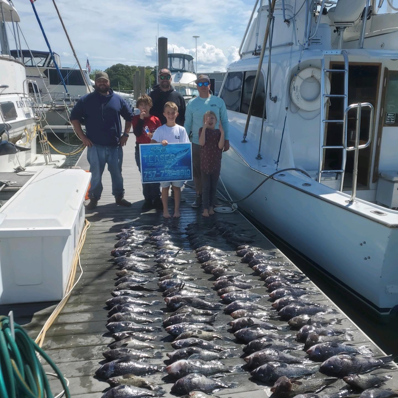 Sea Teaser Sport Fishing Black Sea Bass
